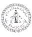 logo_viminacium